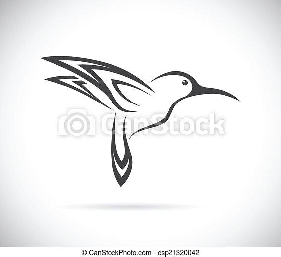 imagen, vector, diseño, colibrí - csp21320042