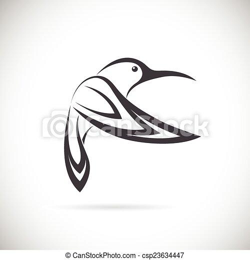Colibri Tatuaje Blanco Y Negro Sfb