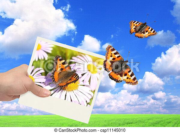 imaginação - csp11145010