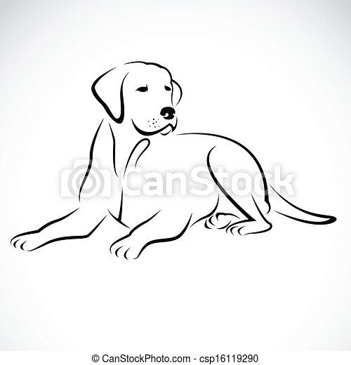 immagine, vettore, labrador, cane - csp16119290