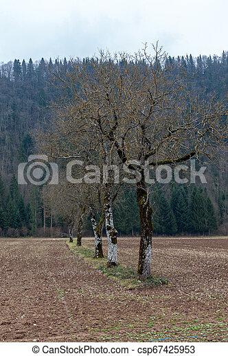 Impression of the Country side in the French Savoy Area - csp67425953