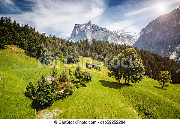 Impressive view of alpine Eiger village. Location place Swiss alps, Grindelwald valley, Europe. - csp59252284