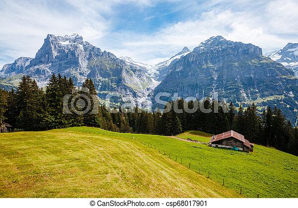 Impressive view of alpine Eiger village. Location place Swiss alps, Grindelwald valley, Europe. - csp68017901