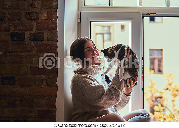 in a warm sweater playing with her cat sitting on the window sill next to the open window - csp65754612