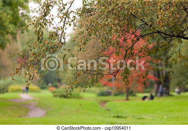 in autumn park - csp10954011