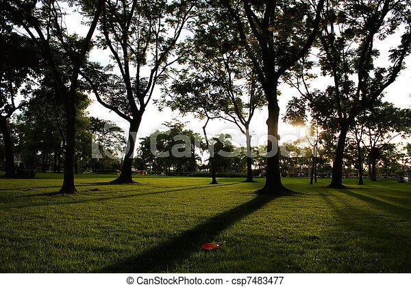 In light of the garden. - csp7483477