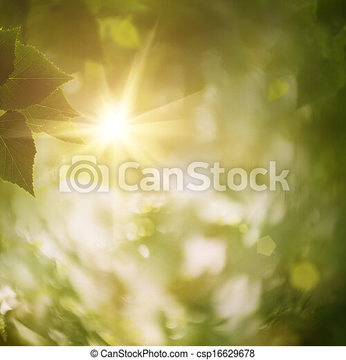 In the forest, abstract natural backgrounds for your design - csp16629678