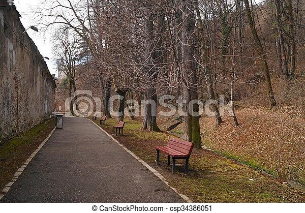 In the park - csp34386051