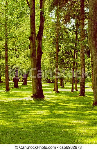 In the park - csp6982973