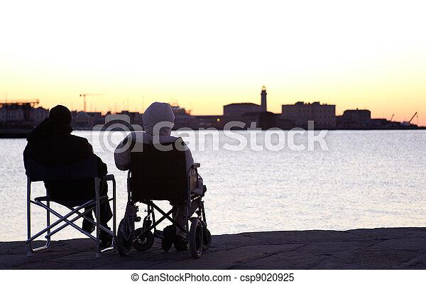 Persona incapacitada en silla de ruedas - csp9020925