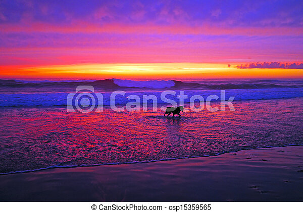 Incredible sunset at the ocean - csp15359565