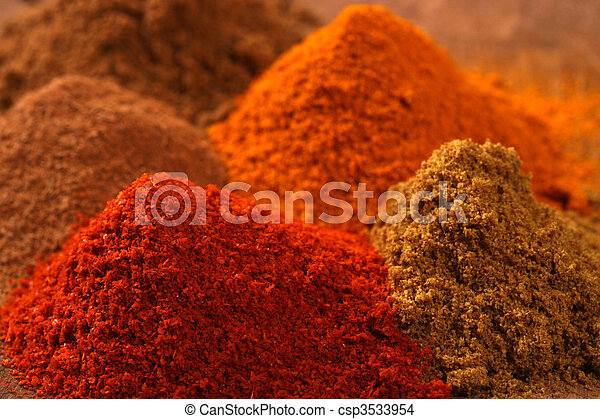 Indian spice - csp3533954