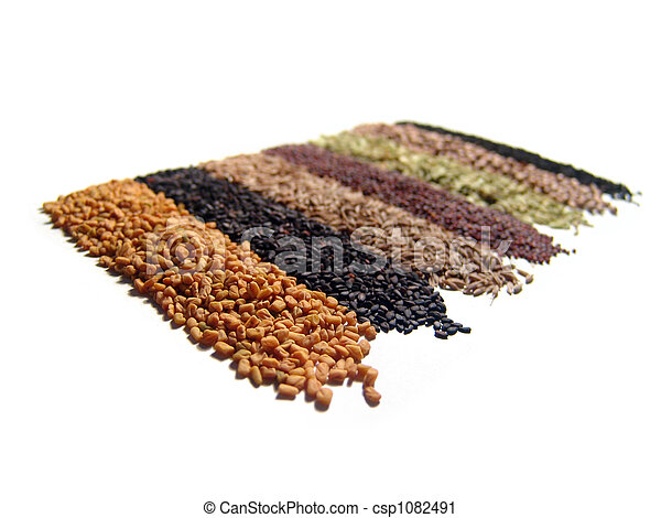Indian Spices - csp1082491