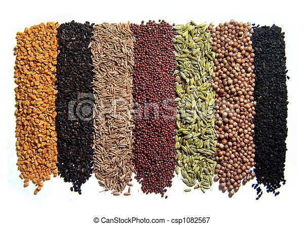 Indian spices - csp1082567