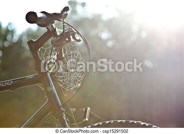 Indian Summer cobweb on the bike - csp15291502