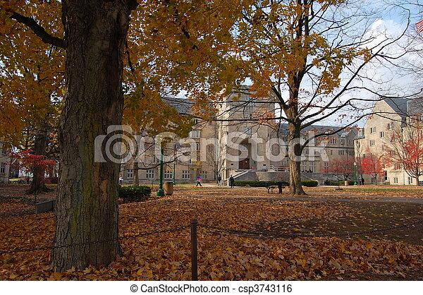 indiana, campus universidade - csp3743116