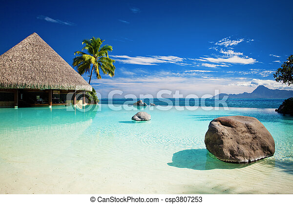 Infinity pool with artificial beach and ocean - csp3807253