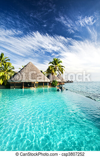 Infinity pool with palms and tropical ocean - csp3807252