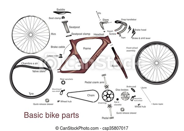 Infographic Of Main Bike Parts With The Names Infographic Of The