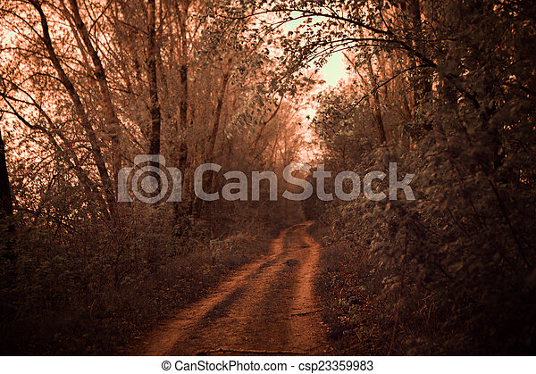 infrared photo of road lined with oak trees - csp23359983
