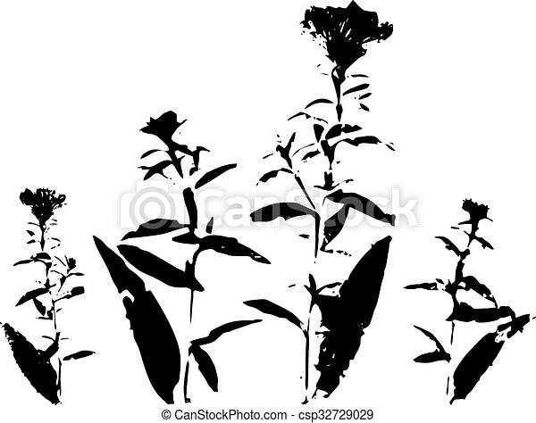 Line Drawing Of Flowers Clipart : Ink drawing wild flowers. silhouette flowers vector