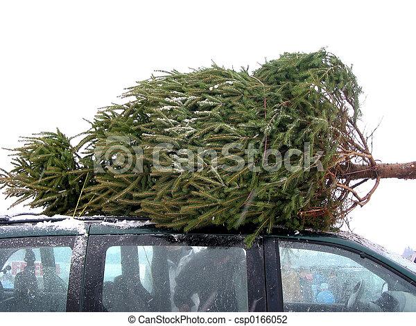 Un árbol de Navidad enorme - csp0166052