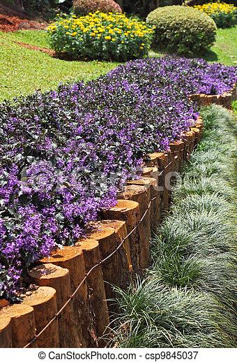 Una obra maestra de jardinería de paisajes, un gran parque en Tailandia - csp9845037