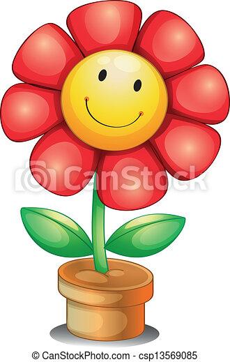 Eine Blume in einem Topf - csp13569085