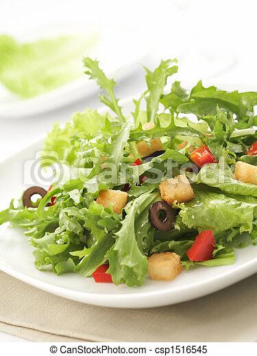 insalata verde - csp1516545