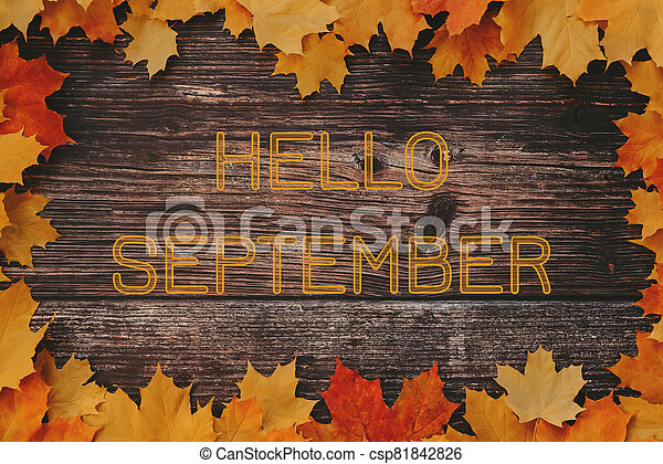 inscription Hello September on a wooden background with a frame of autumn maple leaves - csp81842826