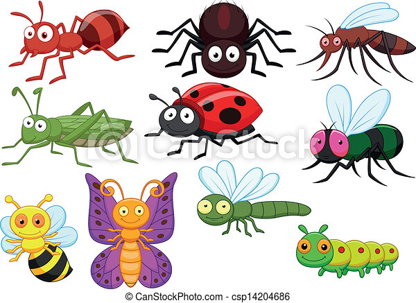 Insect cartoon collection set - csp14204686
