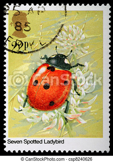 Insect Postage Stamp - csp8240626