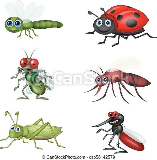 Coleccion de insectos de dibujos animados - csp58142579