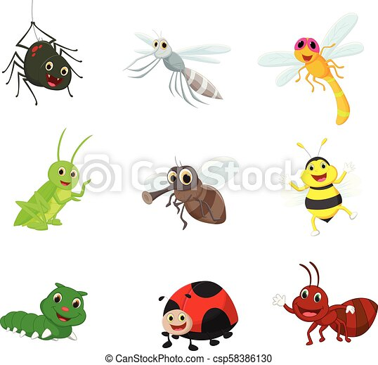 Coleccion de dibujos animados insectos - csp58386130