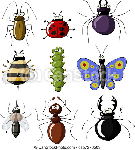Insects - csp7270503