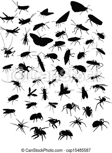 insekty, sillhouettes, pająki, zbiór - csp15485587