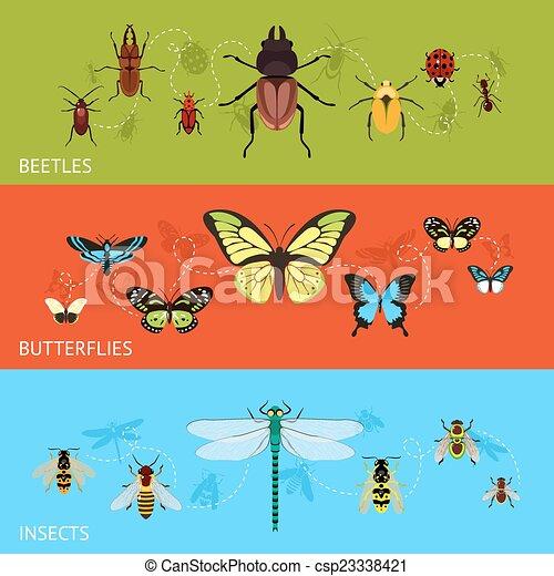 insetos, jogo, bandeira - csp23338421