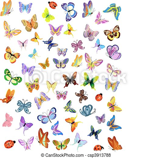 insetti - csp3913788