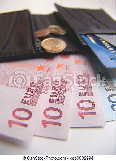 Inside a Wallet - csp0002994