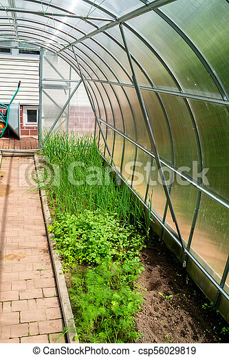 Stupendous Inside Small Garden Greenhouse Home Interior And Landscaping Ologienasavecom