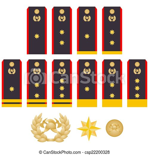 1 piece Hong Kong Fire Services Department Director of Fire Services Epaulette