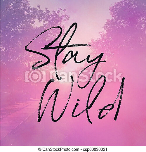 Inspirational Quote - Stay Wild with pink Background - csp80830021