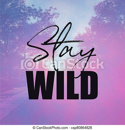 Inspirational Quote - Stay Wild with pink Background - csp80864828