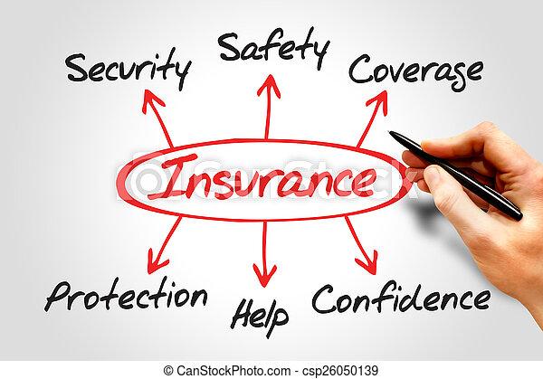 Insurance Diagram - csp26050139