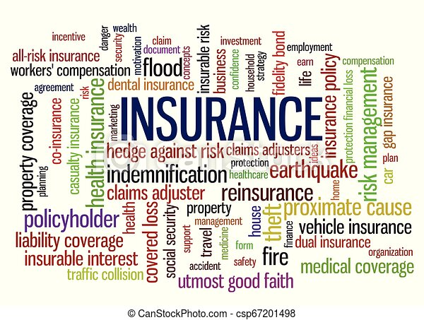 Insurance Word Tag Cloud words related to risk management - csp67201498