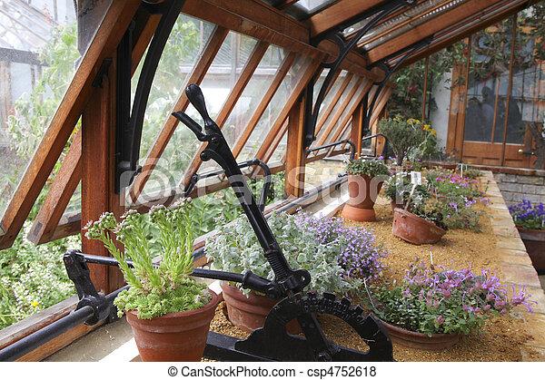 Intérieur, jardin botanique, serre. Usines, cambridge, jardin ...