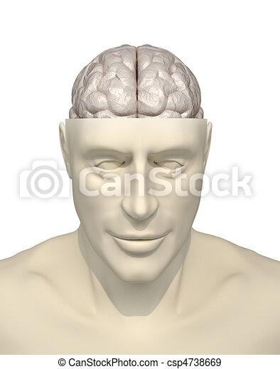 intelligenza, concetto - csp4738669
