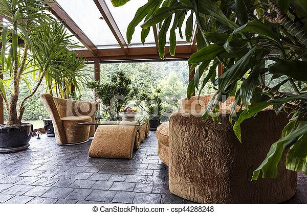 Interior, muebles, encantador, jardín, cómodo. Plantas, jardín ...