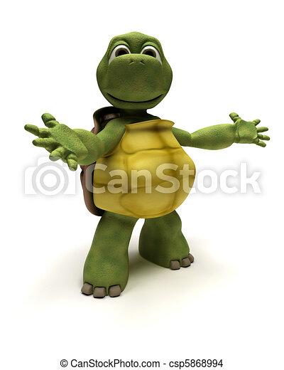 Tortoise en una pose de presentación - csp5868994