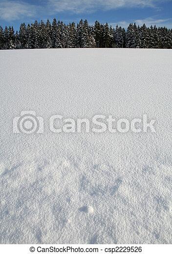 inverno - csp2229526